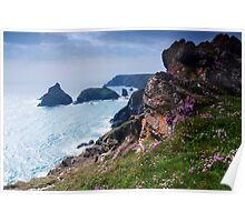 Kynance Cove, Cornwall,UK Poster