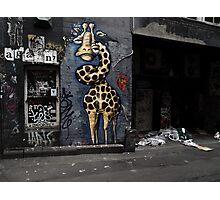 Giraffe in a grotto Photographic Print