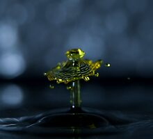 Yellow Gleam by Rex Woodley