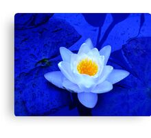The Peak of Perfection in Blue Canvas Print