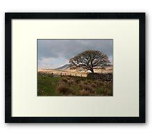 Eskdale Moor Framed Print
