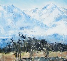 le Canigou from St Cyprien, South of France by christine vandenhaute