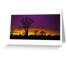 A Boab Tree at Sunrise in Derby WA. Greeting Card