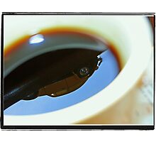 Bugs in my coffee Photographic Print