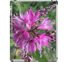 "Symmetry of Pink Flowers - Hebe ""Great Orme"" iPad Case/Skin"
