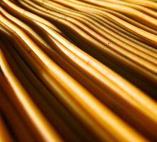 Dunes of Pasta by danielmarcus
