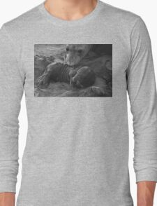 Mother And Baby Elephant Seals Long Sleeve T-Shirt
