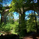 Crawfordsburn Viaduct by oulgundog