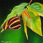 Butterfly #1 by lanadi