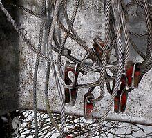 Choker Cables by Jenny Webber