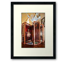 Vitrines 2011 Framed Print
