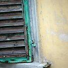 Green Shutter by Rae Tucker