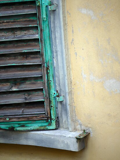 Green Shutter by Rae Tucker