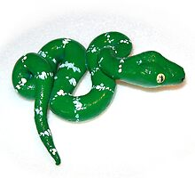 Emerald Tree Boa  by Joann Barrack