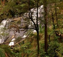 Triplet Falls in the Otways - Victoria by pcbermagui