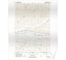 USGS Topo Map Washington Lowden 242084 1991 24000 Poster