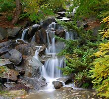 Autumn Waterfall by Rae Tucker