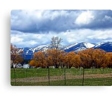 May Day on the Farm Canvas Print