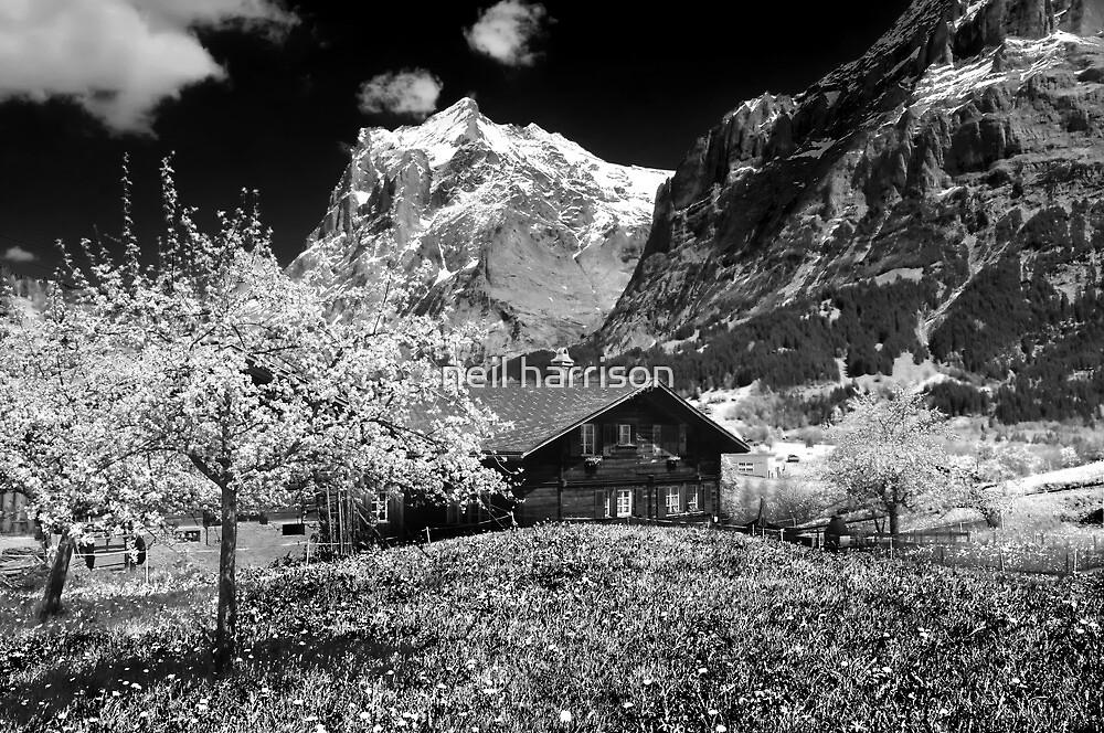 The swiss alps by neil harrison