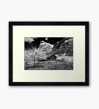 The swiss alps Framed Print
