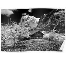 The swiss alps Poster