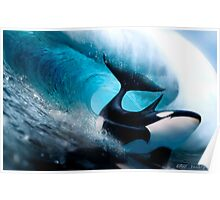 Killer Surf Poster