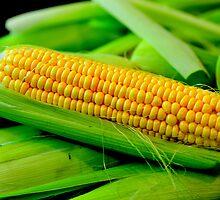 Yellow Corn by Richard Shakenovsky