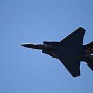 F-15 in Afterburner by flyfish70