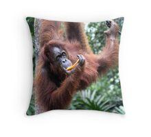 Just Hanging Around, Young Female Orangutan, Borneo  Throw Pillow