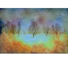 Monet's playground Photographic Print