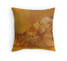 Spread your wings and be a Butterfly... Throw Pillow