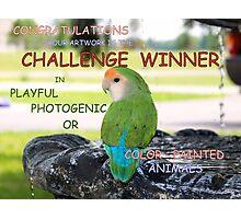 CHALLENGE WINNER BANNER Photographic Print