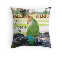 CHALLENGE WINNER BANNER Throw Pillow