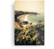 Fog landscape on Laguna Beach Metal Print