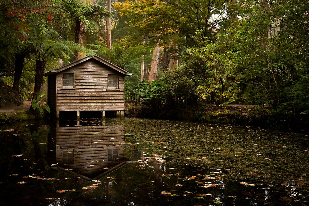 The Boat Shed by John Robb