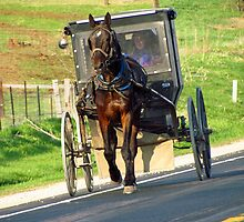 The Amish Highway by Kam Johnson