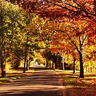 Autumn Alley by Sarah Donoghue