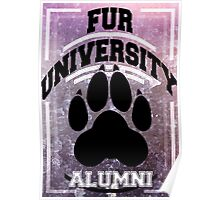FUR UNIVERSITY -purple- Poster