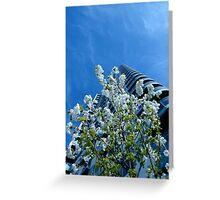 Sky, Scraper, Blossom - Spring @ Media City Greeting Card