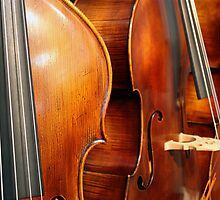 Music:  contrabass by Evogance