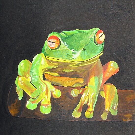 Red Eyed Tree Frog by taiche