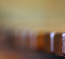 Marimbaphon:Close-up of a wonderful instrument by Evogance