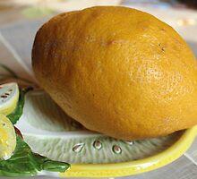 Lemon Squeezer by karina5