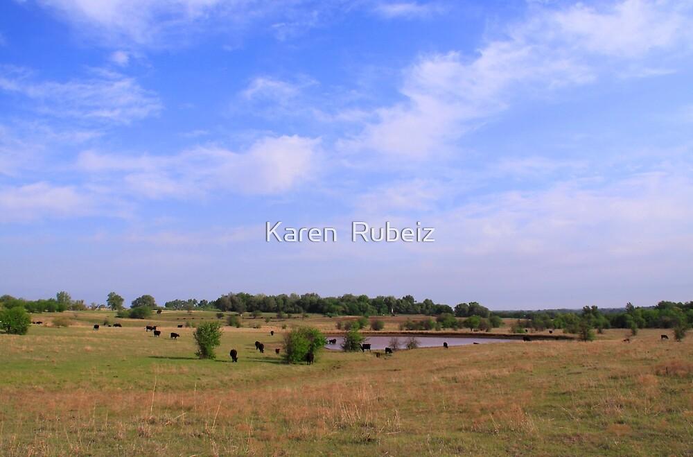 Blue is just a Kansas summer sky by Karen  Rubeiz