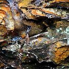 Rock abstract by Photos - Pauline Wherrell