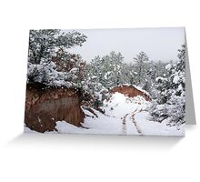 Road to the creek bed  Greeting Card