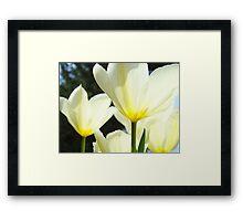 White Tulip Flowers Floral art print Baslee Troutman Framed Print