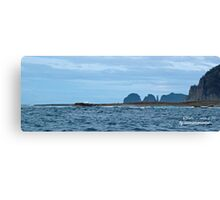 TASMAN PENINSULA ~ O'Hara Bluff, The Thumbs, The Lanterns by tasmanianartist Canvas Print