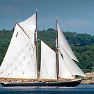 Bluenose II Sail into Gloucester Harbor by Steve Borichevsky