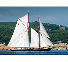 Bluenose II Sail into Gloucester Harbor Photographic Print